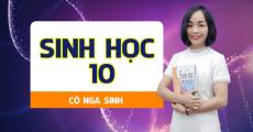 Sinh học 10 - Cô Nga Sinh